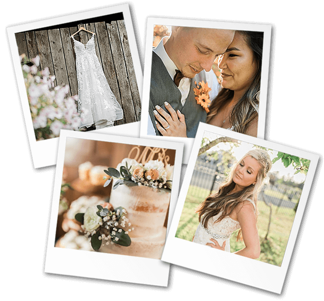Stephanie Gray Photography Wedding Gallery